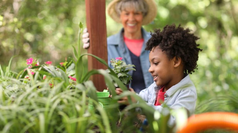 Afbeelding voor Implementing Sustainability in Your Montessori Environment